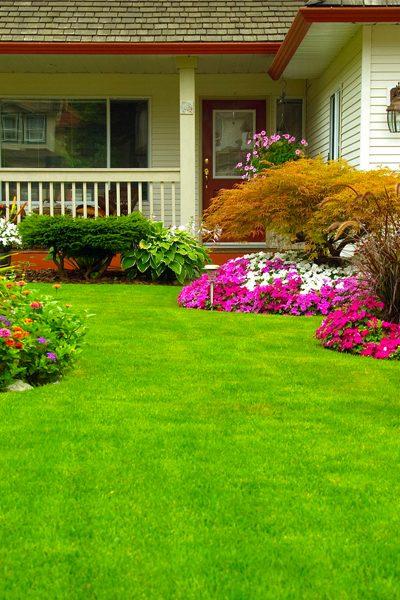 Walkout garden
