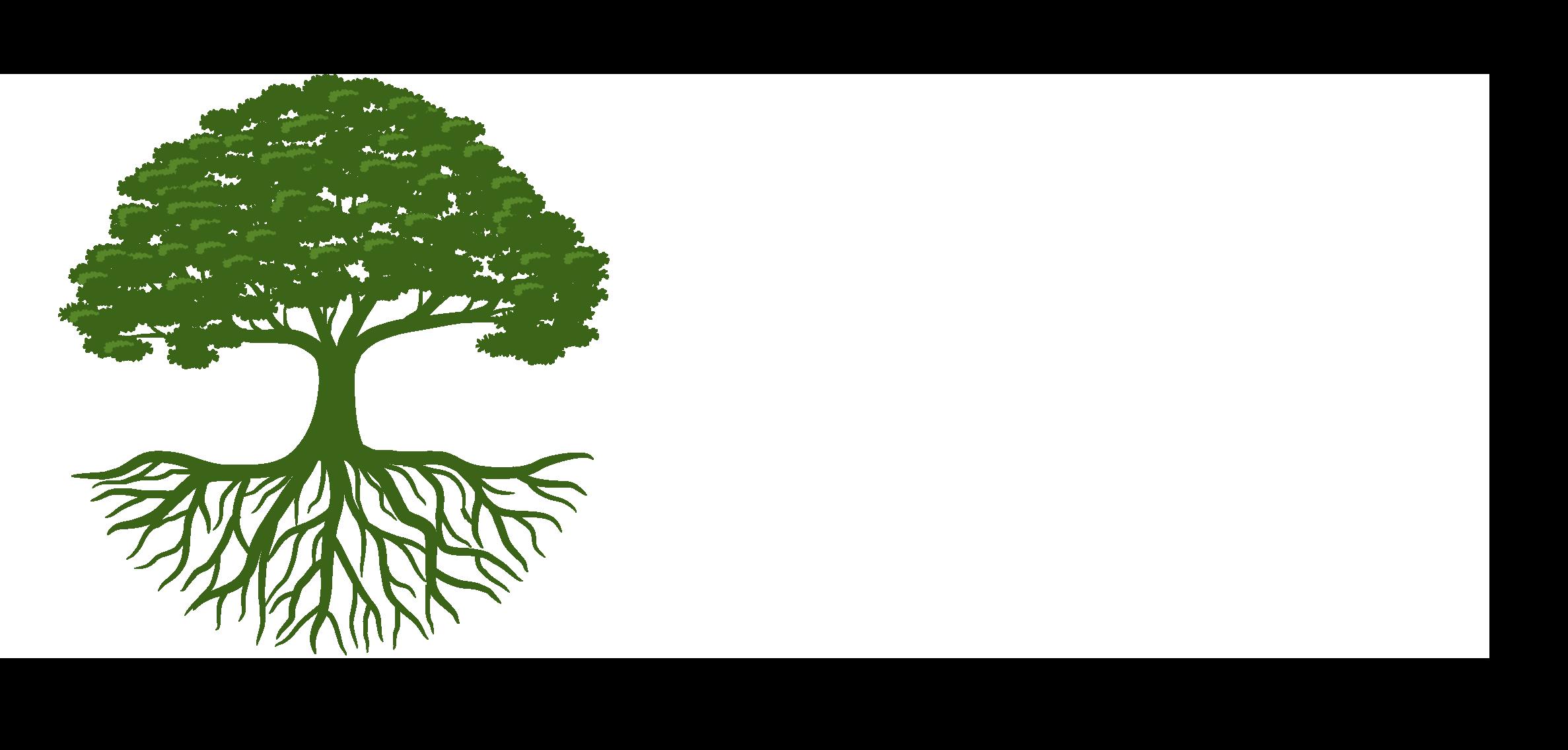 Premier Greenscapes